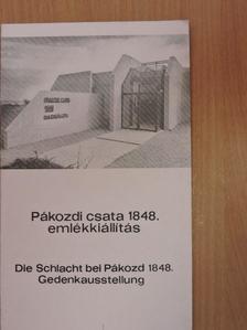 Demeter Zsófia - Pákozdi csata 1848. emlékkiállítás [antikvár]