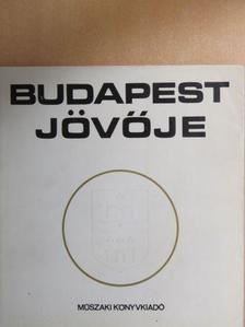 Berczik András - Budapest jövője [antikvár]