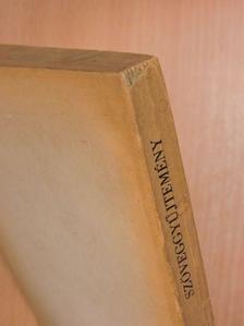 Ady Endre - Szöveggyűjtemény a XIX. század irodalmából [antikvár]