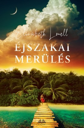Elizabeth Lowell - Éjszakai merülés [eKönyv: epub, mobi]