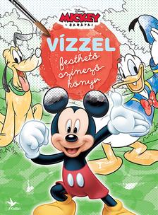 Vízzel festhető színezőkönyv: Mickey egér és barátai