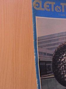 Bizám György - Élet és Tudomány 1982. (nem teljes évfolyam) [antikvár]