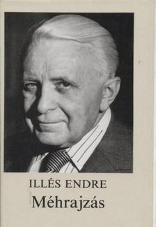 Illés Endre - Méhrajzás [antikvár]