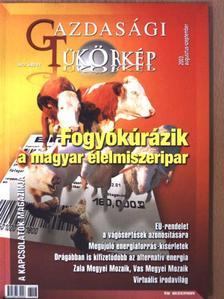 Mester Andrea - Gazdasági Tükörkép 2003. augusztus-szeptember [antikvár]
