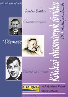 Sándor Ildikó - Kötelező olvasmányok röviden 11. osztályosoknak