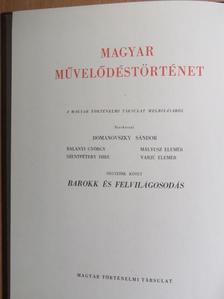 Alszeghy Zsolt - Magyar művelődéstörténet 4. [antikvár]