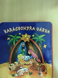 Bogos Katalin - Karácsonyra várva [antikvár]