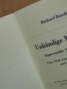 Richard Bandler - Unbändige Motivation - Angewandte Neurodynamik [antikvár]