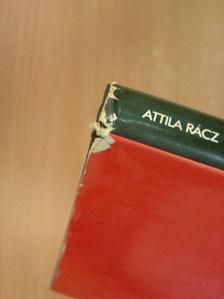 Rácz Attila - Courts and Tribunals [antikvár]