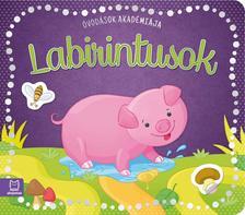 Barbara Wierzchowska - Óvodások akadémiája - Labirintusok