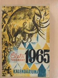 Antalffy Gyula - Élet és Tudomány Kalendáriuma 1965 [antikvár]