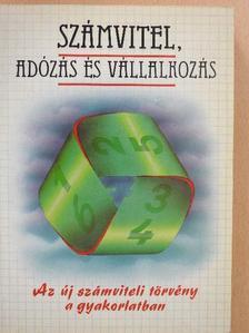 Dolesch Ferenc - Számvitel, adózás és vállalkozás [antikvár]