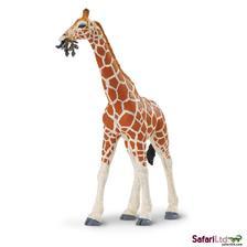 Safari - Safari Zsiráf (268429)