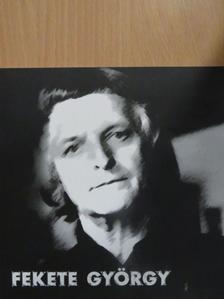 Dvorszky Hedvig - Fekete György - Belsőépítész, iparművész [antikvár]