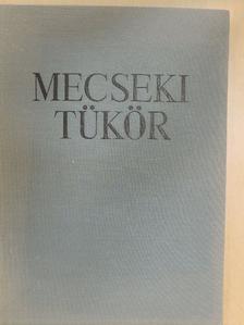 Andik István - Mecseki tükör [antikvár]