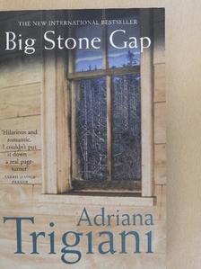 Adriana Trigiani - Big Stone Gap [antikvár]