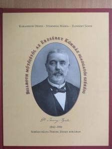 Karasszon Dénes - Billroth műtőjétől az Erzsébet Kórház igazgatói székéig [antikvár]