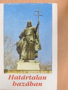 Babits Mihály - Határtalan hazában [antikvár]