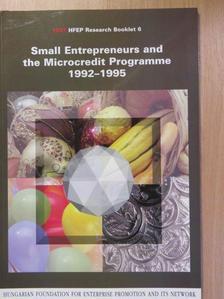Ágnes Vajda - Small Entrepreneurs and the Microcredit Programme 1992-1995 [antikvár]