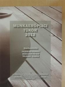 Benczúr Péter - Munkaerőpiaci tükör 2012 [antikvár]