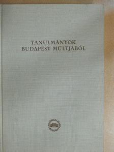 Fügedi Erik - Tanulmányok Budapest múltjából XIII. [antikvár]