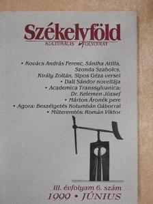 Bak Áron - Székelyföld 1999. június [antikvár]