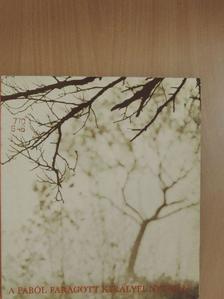 Gink Károly - A fából faragott királyfi nyomán [antikvár]