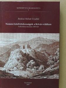 Bánkiné Molnár Erzsébet - Nemesi közbirtokosságok a Kővár-vidéken [antikvár]