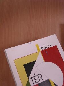 Bajmócy Péter - Tér és Társadalom 2001/1. [antikvár]