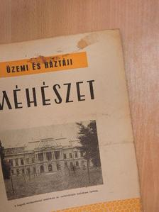 Dr. Mérő Jenő - Üzemi és háztáji méhészet 1954. november [antikvár]
