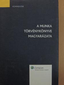 Berki Katalin - A Munka Törvénykönyve magyarázata [antikvár]