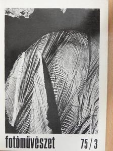 Bálint Endre - Fotóművészet 1975/3. [antikvár]