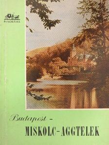 Hidasi György - Budapest-Miskolc-Aggtelek [antikvár]