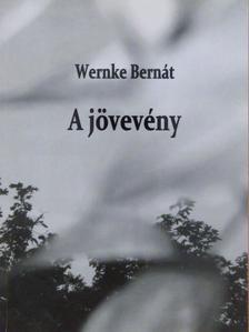 Wernke Bernát - A jövevény [antikvár]