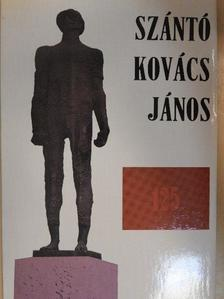 Dr. Csatordai Antal - Szántó Kovács János születésének 125. évfordulójára [antikvár]