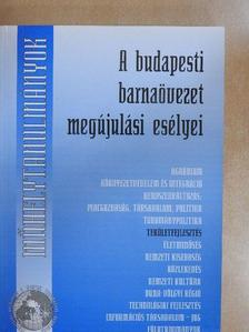 Erő Zoltán - A budapesti barnaövezet megújulási esélyei [antikvár]