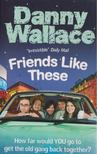 Danny Wallace - Friends Like These [antikvár]