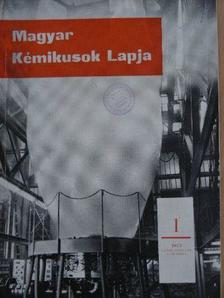 Áldott Lászlóné - Magyar Kémikusok Lapja 1973. január-december [antikvár]