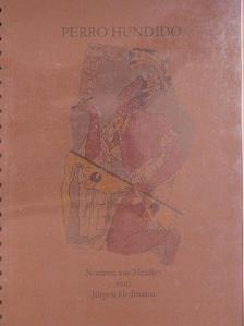 Jürgen Hofmann - Perro Hundido - Notizen aus Mexiko [antikvár]