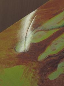 Bagosi Dávid - Fonéma [antikvár]
