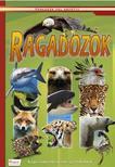 Ragadozók - Képes ismeretterjesztés gyerekeknek