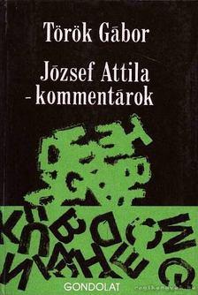 Török Gábor - József Attila - kommentárok [antikvár]