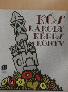 Sas Péter - Kós Károly képeskönyv [antikvár]