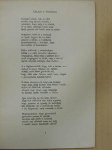 Babits Mihály - Költészet [antikvár]