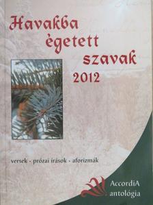 Aranyi Zsuzsanna - Havakba égetett szavak 2012 [antikvár]