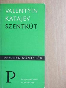 Valentyin Katajev - Szentkút [antikvár]