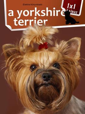 VARGA MÓNIKA - 1x1 - A yorkshire terrier