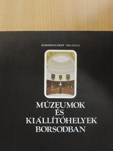 Szabadfalvi József - Múzeumok és kiállítóhelyek Borsodban [antikvár]