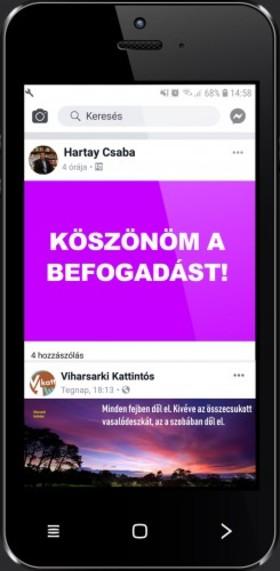 Hartay Csaba - Köszönöm a befogadást! [eKönyv: epub, mobi]