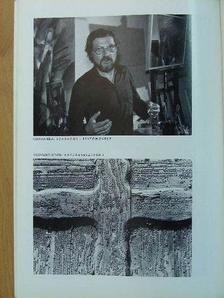 Ibos Iván - Fotó 1981. október [antikvár]